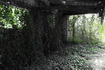 batiment buisson
