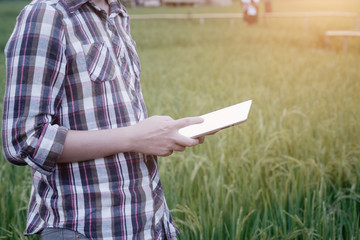 Agriculture using tablet reading a data agricultural technology with smart farm.