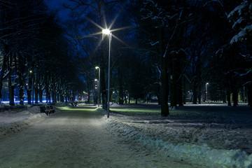 Winter evening in city. Illuminated roud throught snowy park near  snowed benches .