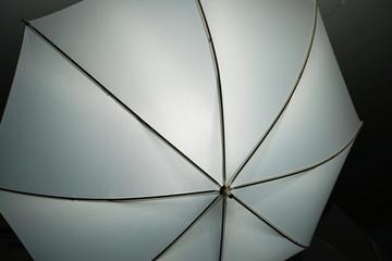 Durch licht schirme als Lichtformer im Studio fotografiert
