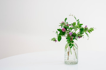 Vicia cracca flowers in a glass vase stand on a white table