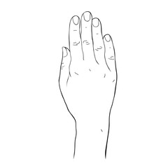 coloring Female hand palm down.  illustration