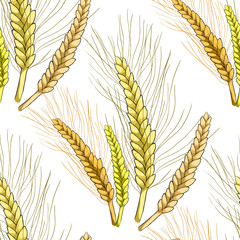 seamless pattern mature of wheat close. illustration