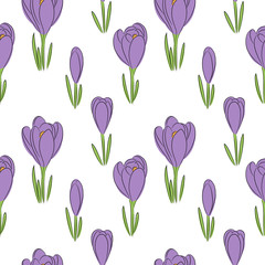 vector color crocus flower seamless pattern