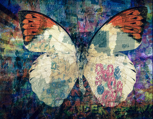 Photo sur Aluminium Papillons dans Grunge grunge Butterfly background texture