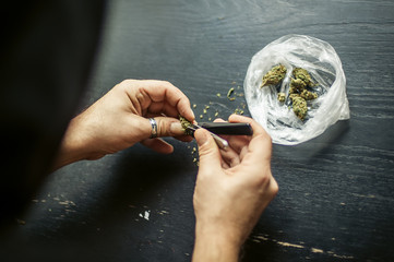 Preparing marijuana cannabis joint. Drugs narcotic concept