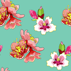 seamless pattern  flower of the almond blossoms.  illustration