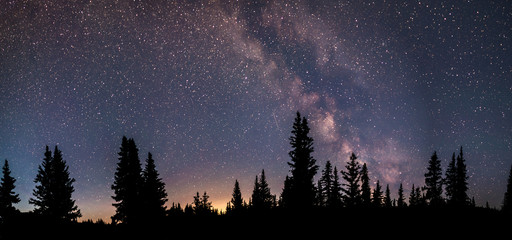 Milky Way Panorama. A silhouette of a forest in the wilderness. Light pollution can be seen in the distance.