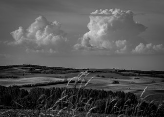 Wall Murals Gray Rural landscape in summer, Hungary, black and white. Panoramic view of country fields, hills in background, dramatic sky and clouds.