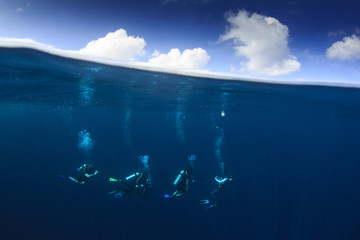 Scuba divers underwater half and half split over under photo