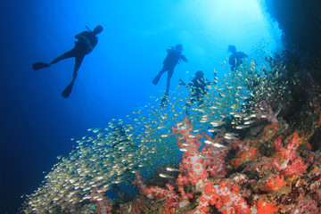 Scuba dive coral reef underwater