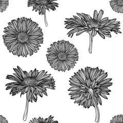 Seamless monochrome chamomile pattern.