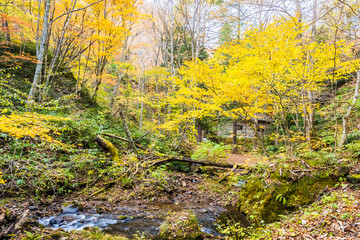 Tatsuzawafudo Falls at Fukushima in autumn
