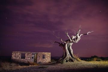 noche en el desierto de tabernas