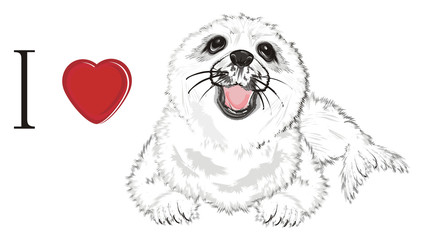 Door stickers Hand drawn Sketch of animals seal, white seal, baby seal, animal, ice, cold, snow, fur, illustration, white, cute, funny, winter, nature, background, nature, isolated, zoo, ocean, sea, red, love, heart, i love seal