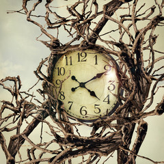 Photo sur Toile Surrealisme Nature and Time