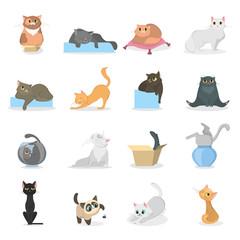 Funny cats set.