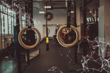 gymnastic rings in fitness gym