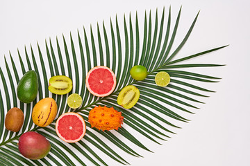 Tropical Palm Leaf and Fresh Fruits. Summer set. Nature green Layout. Colorful Design. Creative Art. Healthy Food concept. Bright Summer background. Flat lay.