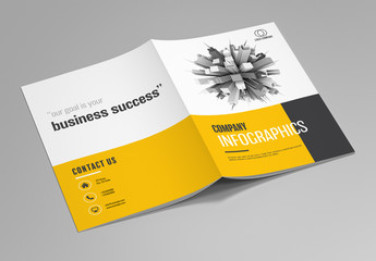 Company Infographics Brochure