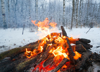 The fire in the winter woods .