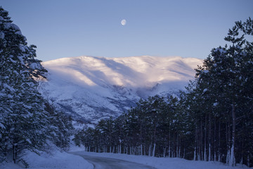 Snowed winter road into the coniferous forest with the moon in the sky