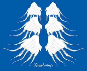 Set Of Three Different Wings. Collection Of Elements. Feather Angel Wings.