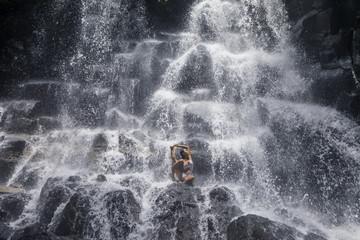 Urdvha parivrtta Janu sirsasana III pose at the Yoga Waterfalls