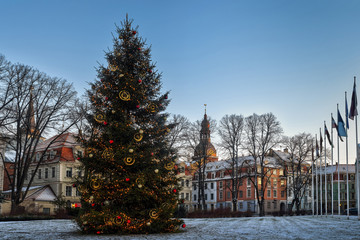 Wall Mural - Riga, Latvia. Xmas Christmas Tree At Evening In Night Illuminations Lights.