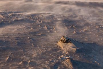 des traces dans le  sable créées par le vent sur une plage