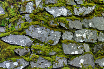 Detail of a mossy stone wall.