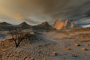 Desert, a beautiful  landscape, a black tree, stones on the ground and a cloudy sky.
