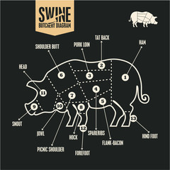 Butchery, Classic pork cuts. Swine butchery diagram. Pork meat. Butcher logo.