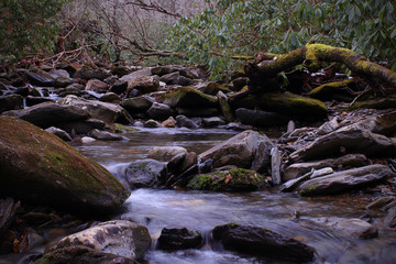 Macro Naturescape of a Small River in Slow Shutter Speed