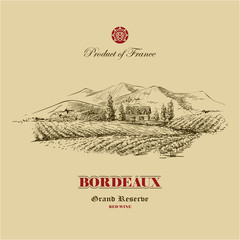 vineyard landscape hand drawn illustration, wine label design template