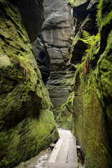 path in Adrspach- beautiful sandstone rocks town in Sudety, Czech Republic