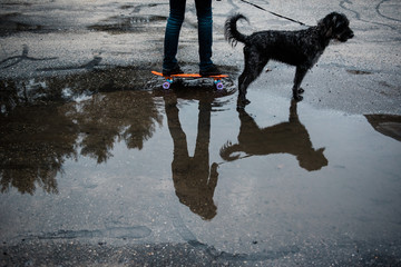 teen  with skate board and dog walking on rainy day