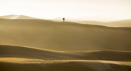Photographer on a Sanddune