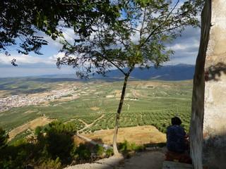 Campo de Iznatoraf en  Jaén, Andalucía (España) junto a Villanueva del Arzobispo, en la comarca de las Villas.