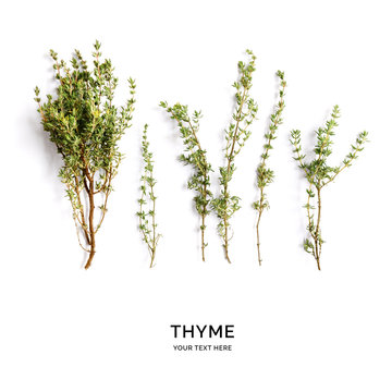 Creative layout made of thyme. Flat lay. Food concept. Thyme on the white background