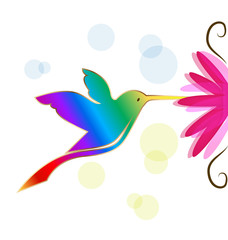 Colorful hummingbird symbol