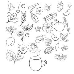 vector tea set