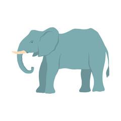 vector cartoon elephant