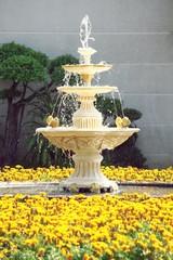 Decorative fountain in the garden.