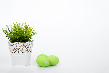 Pot with flower and colorful easter eggs over white background