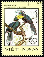 Ukraine - circa 2018: A postage stamp printed in Vietnam shows drawing bird Black Hornbill - Anthracoceros malayanus. Series: Birds. Circa 1977.