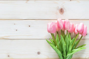 Spring flower background with beautiful pink tulip on white wood frame backdrop for seasonal greeting card celebration