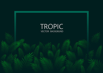 Design with exotic tropical palm leaves and lettering. Vector tropical background. Wall mural