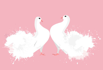 Pair of white enamored doves with watercolor sprays. Vector illustration for your creativity