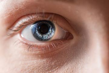 Human blue eye with reflection. Macro shot.